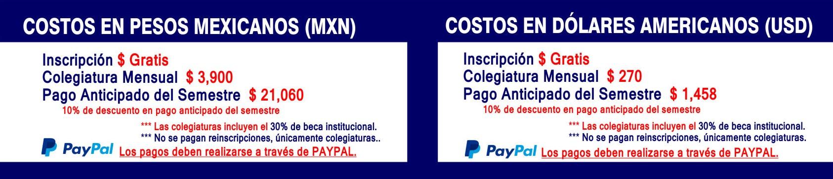 Costos Doctorados (D)