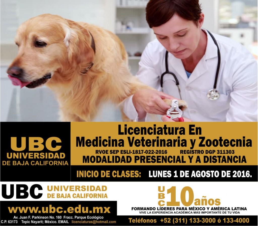 Lic. Medicina